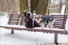 Winterzeit - endlich wieder Schnee ;-)