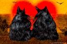 Scottish Terrier Liebes Grußkarte scottish-terrier-0001