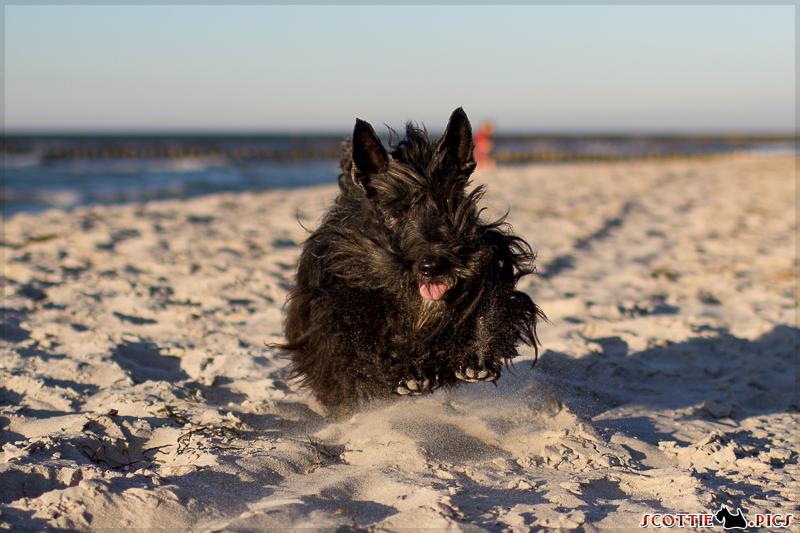 ... und Strand :)