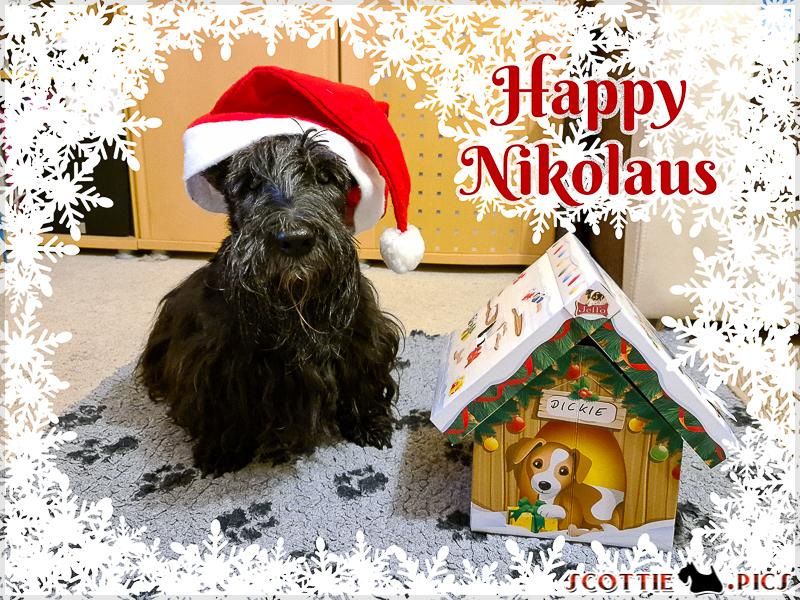 Happy Nikolaus :D